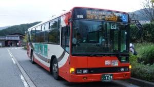 DSC05385.jpg