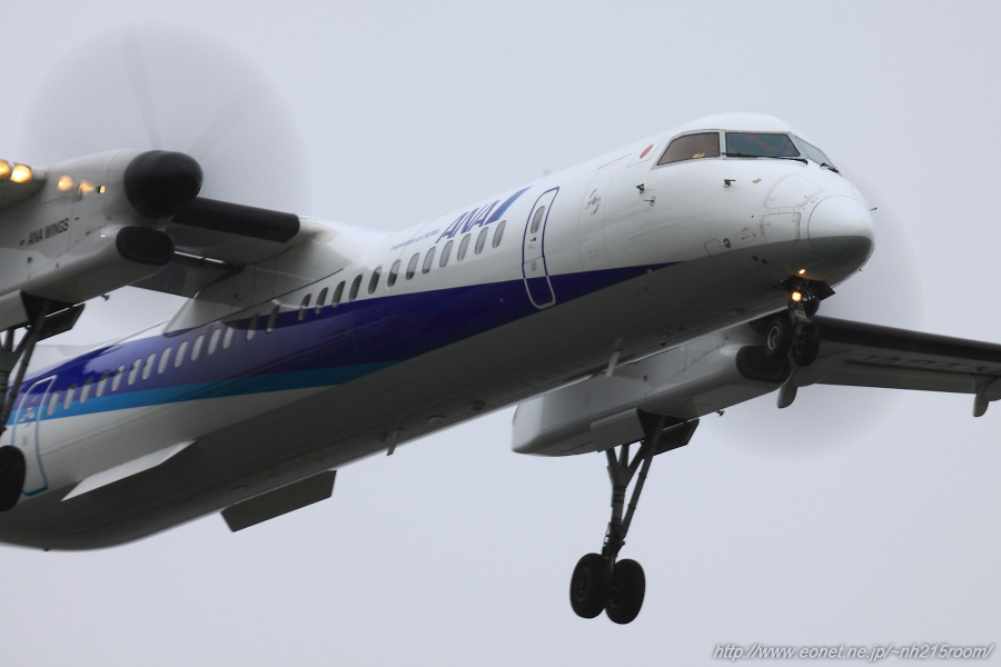 ANA WINGS DHC-8-402Q / JA844A@東水門周辺某所