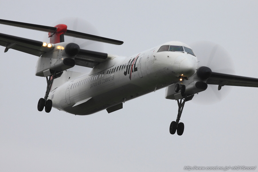 JAC DHC-8-402Q / JA843C@東水門周辺某所