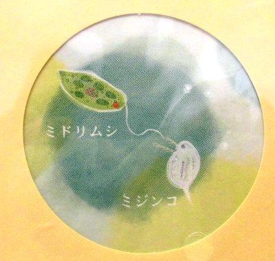 小さな世界のレターセット (2)