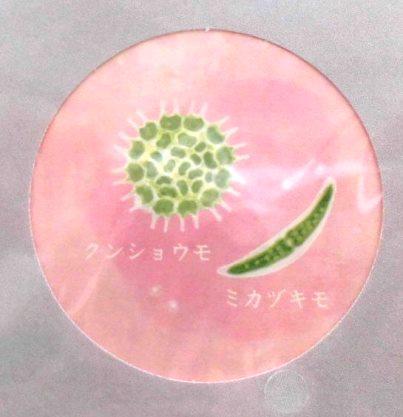 小さな世界のレターセット (4)