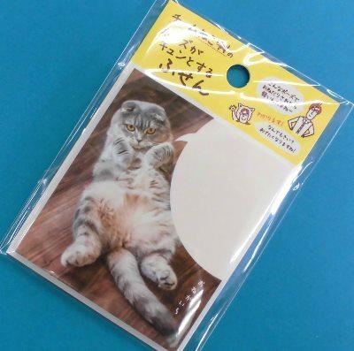 チーム猫好き (4)