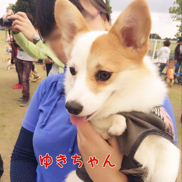 yuki8895.jpg