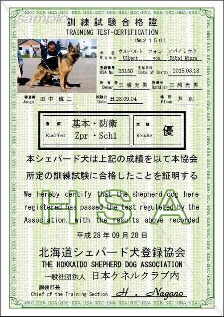 訓練試験合格證-シェパードsample