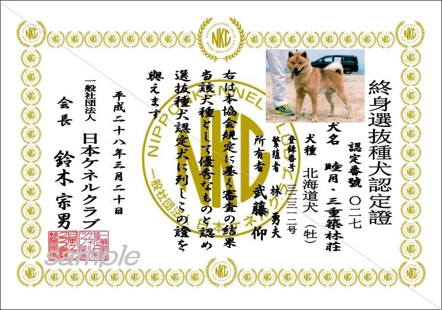 終身選抜種犬認定證sample