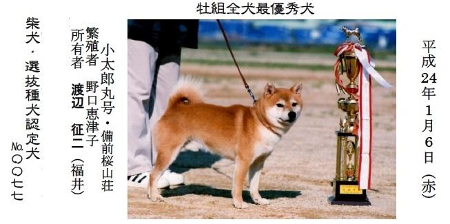 20161002-02展覧会成績-全犬種最優秀犬