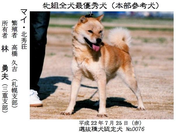 20161002-06展覧会成績-北海道犬最優秀犬02マイ