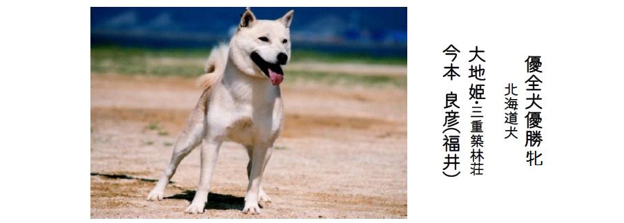 20161002-07展覧会成績-北海道犬優全犬01