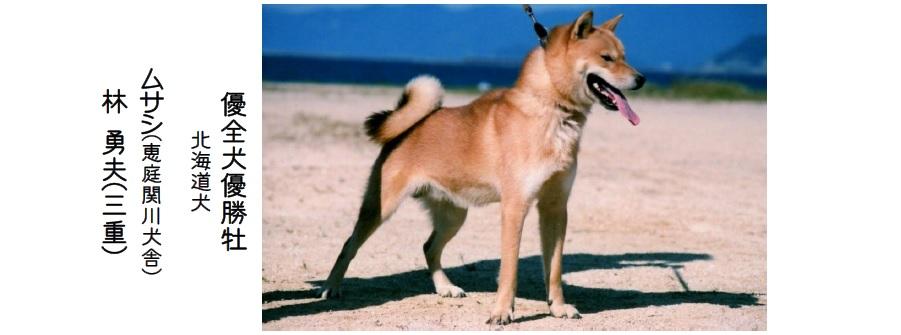 20161002-08展覧会成績-北海道犬優全犬02