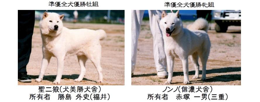 20161002-09展覧会成績-北海道犬準優全犬
