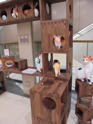 各階、色んな猫が・・・