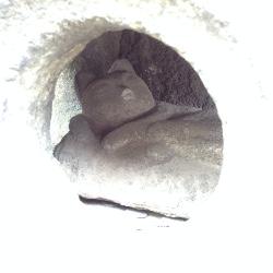 谷中永久寺2