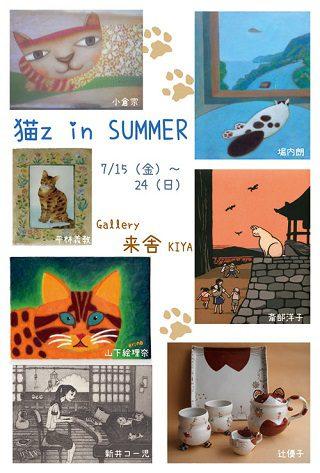 猫z in SUMMER
