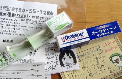 歯磨きペーストとハブラシ