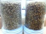 150912 (30)キリン取手ハートランド_淡色麦芽とカラメル麦芽