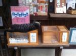 160925 (41)梅宮大社_社務所のネコ
