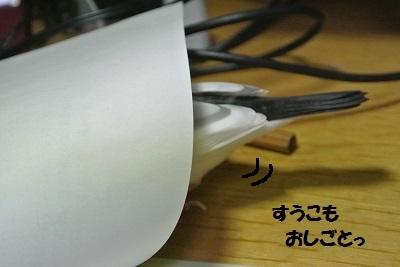 DSC_6376.jpg