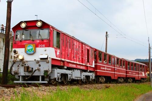 IMG_3530 井川線 DD