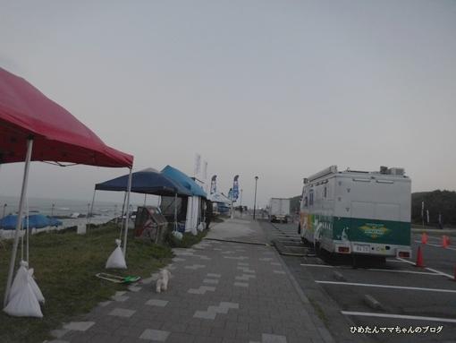 DSCN3313.jpg