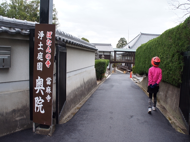 20160403KatsuraS095s.jpg