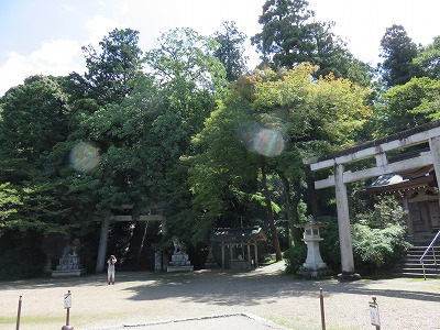 suibun03_keidai.jpg
