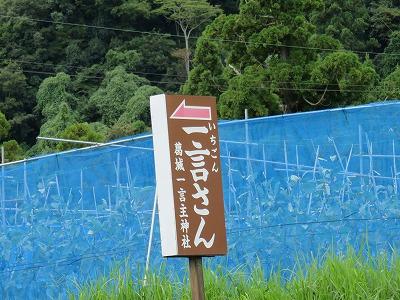suibun23_ichigon.jpg