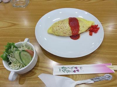yoshi55.jpg