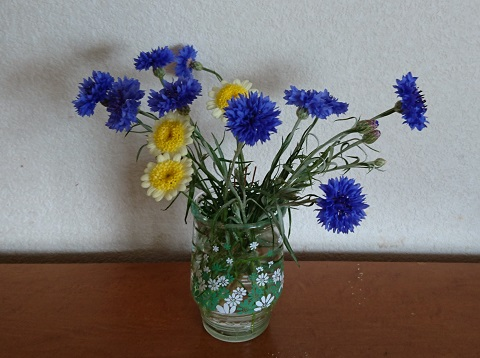 gardening717.jpg