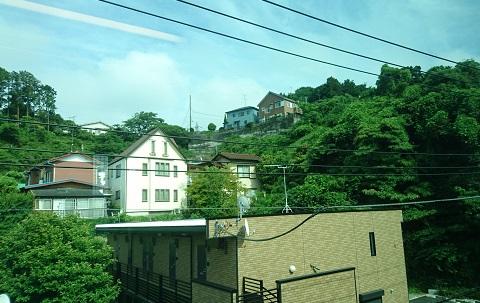 nishikama5.jpg
