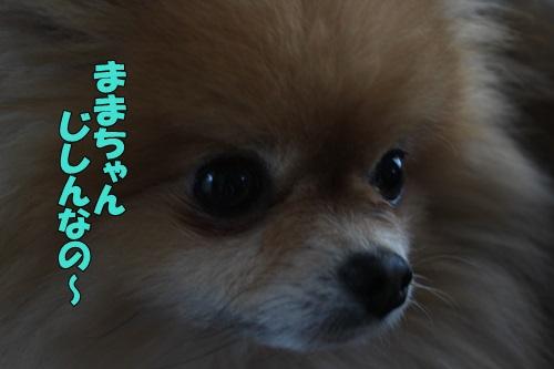 0IMG_8610.jpg