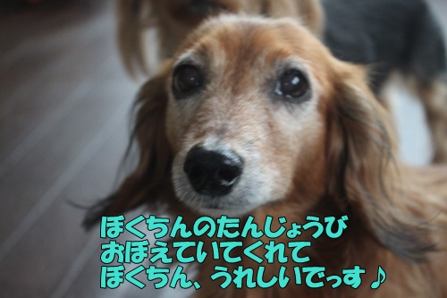 IMG_867700.jpg