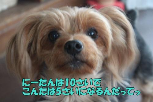 IMG_867800.jpg