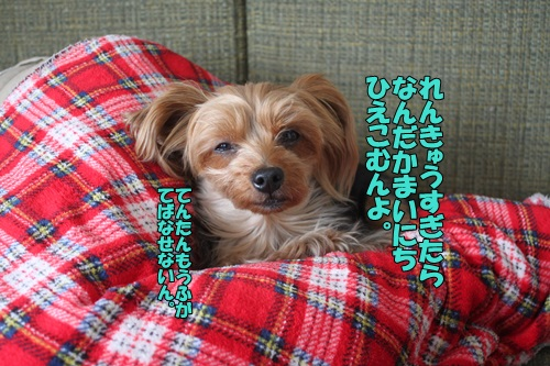IMG_869200.jpg
