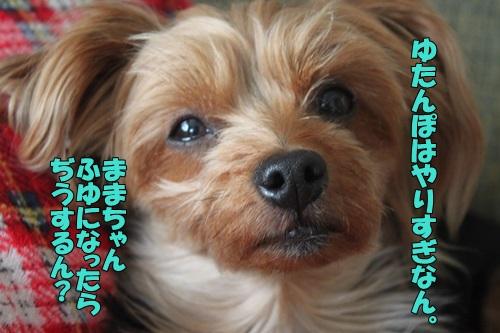 IMG_869700.jpg