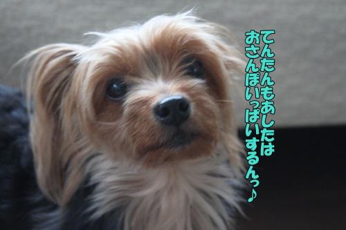 IMG_87190.jpg