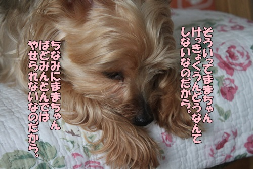 IMG_885201.jpg