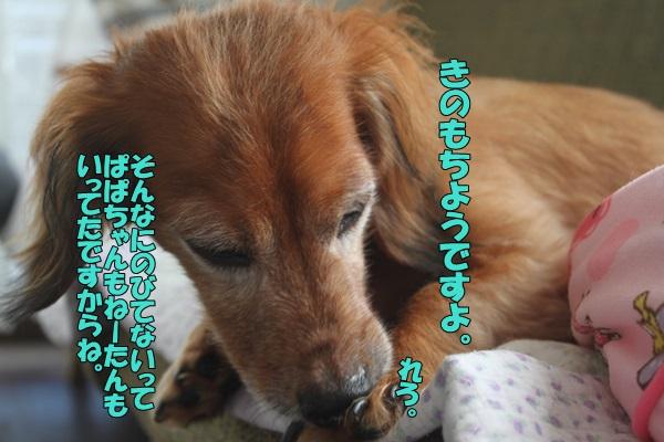 IMG_903001.jpg