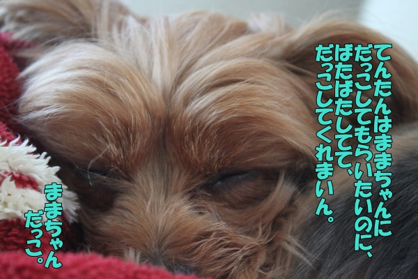 IMG_9257001.jpg