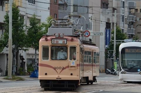 DSC_3397.jpg