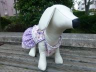 犬服L花とチェック