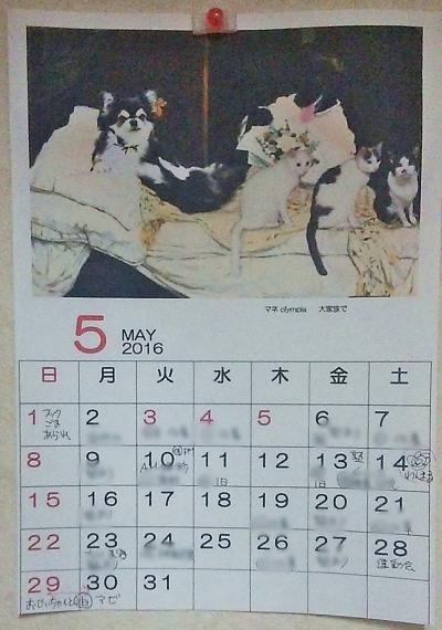 大家族のカレンダー♪