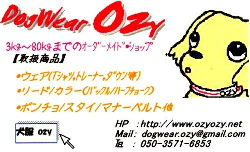 DogWear Ozy