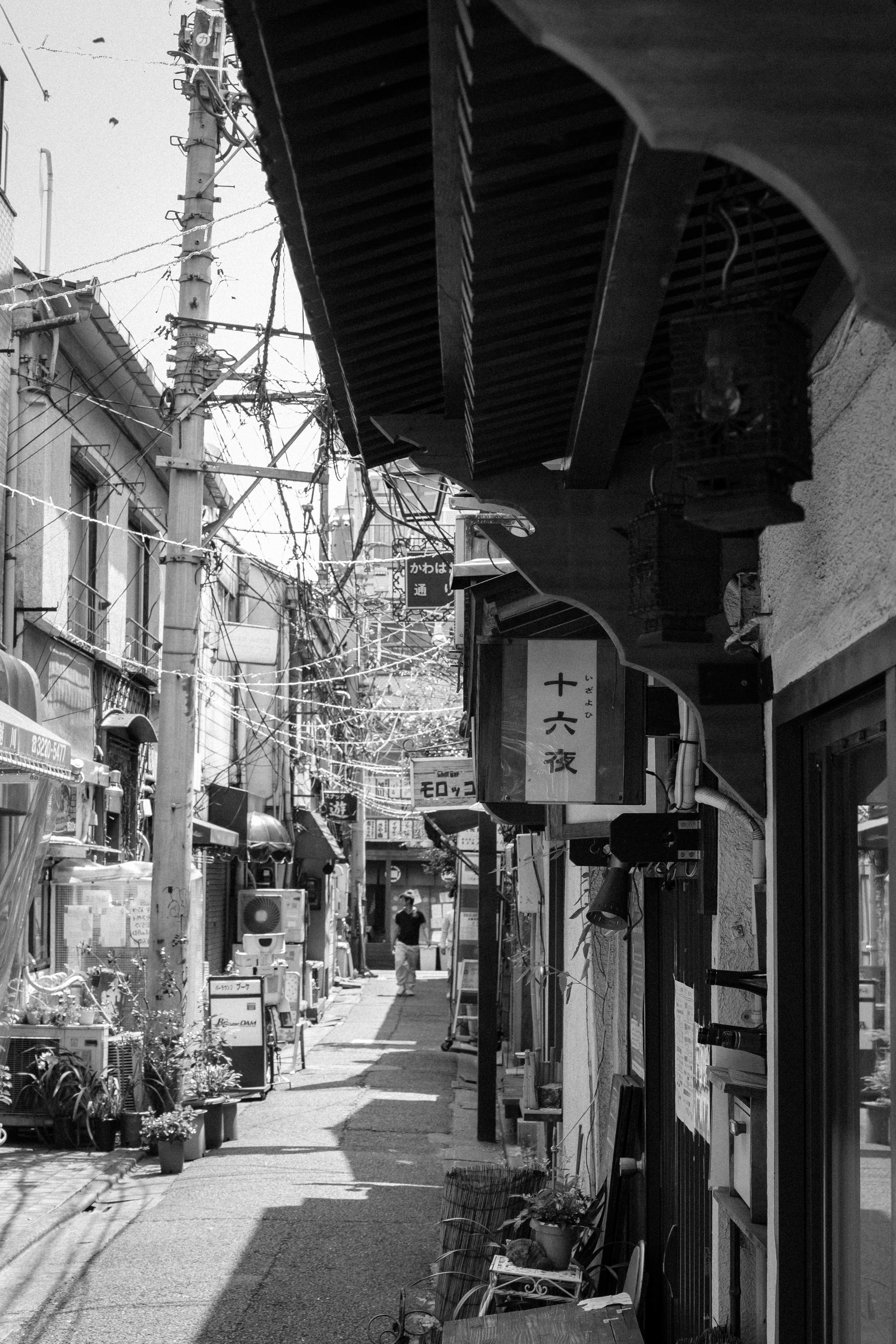 阿佐ヶ谷散策(11)