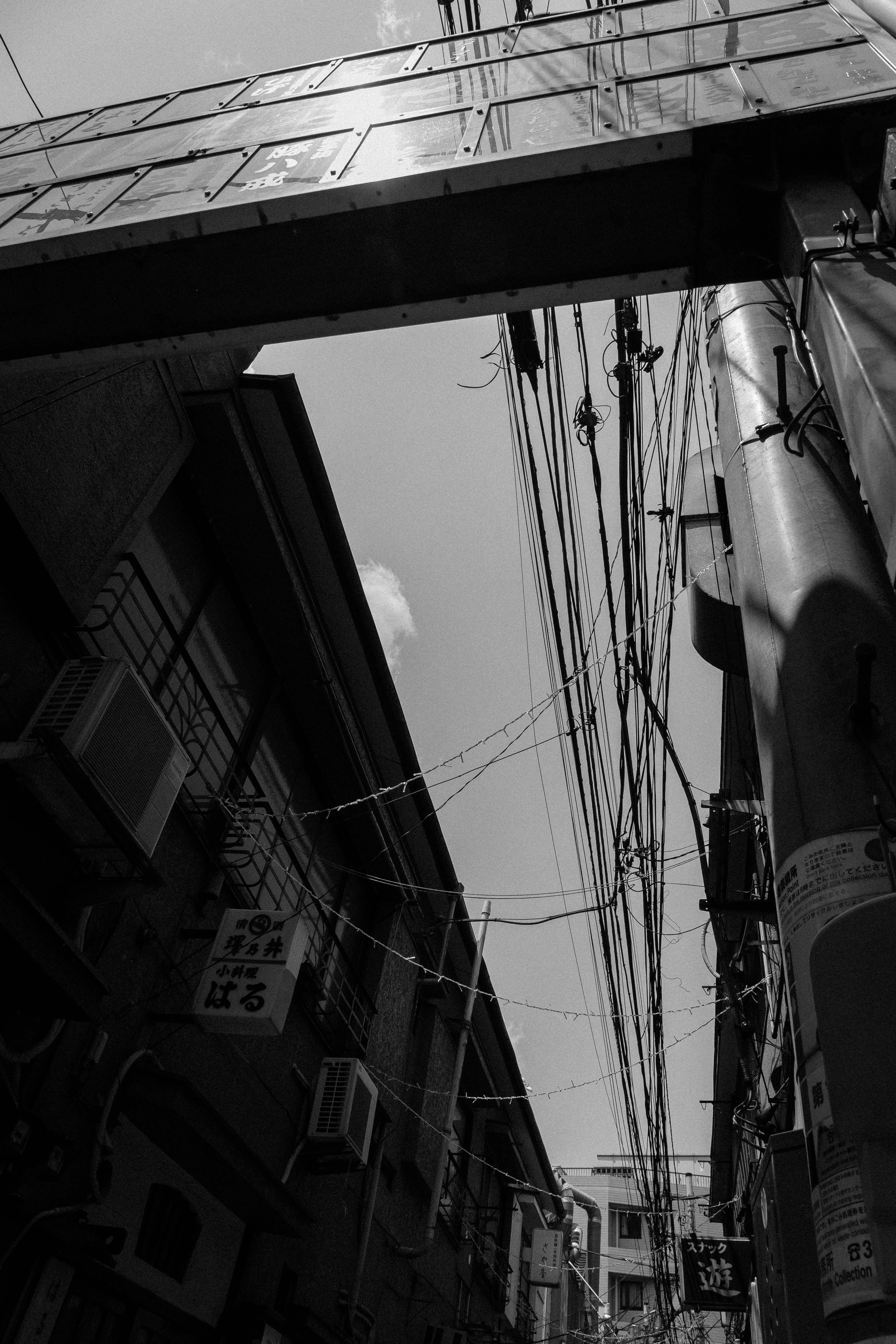 阿佐ヶ谷散策(8)