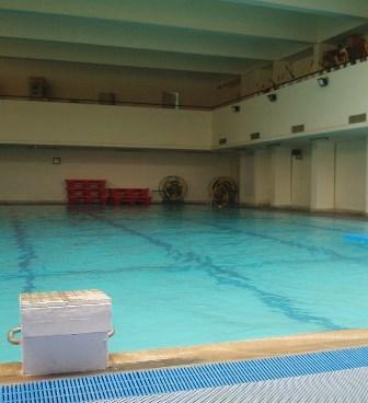 japanese-pool-1024x768[1]