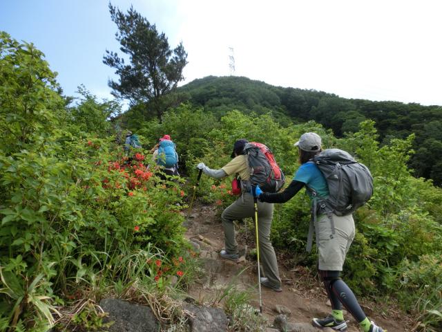 trekking1.jpg