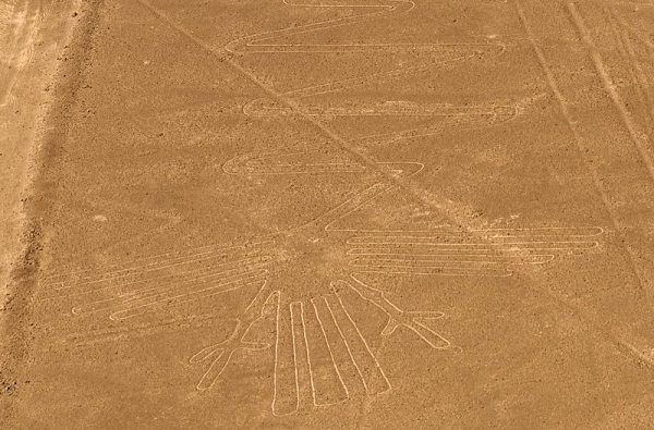 800px-Lignes_de_Nazca_oiseau.jpg