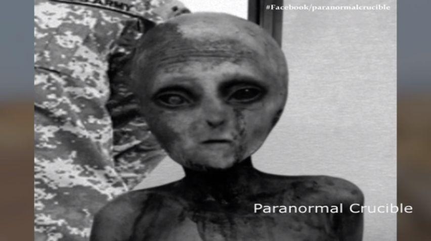 【エイリアン】アメリカでUFOが墜落し、宇宙人が生きたまま捕獲された模様…その宇宙人とUFOの画像が流出か