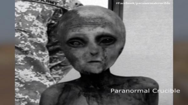 alien_taken_alive1.jpg