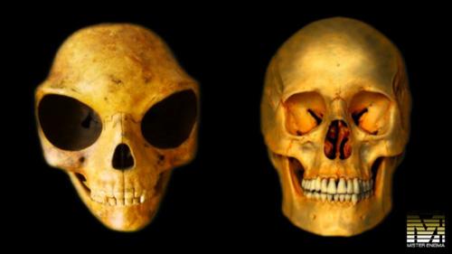 aliens_skull-20160726140020.jpg